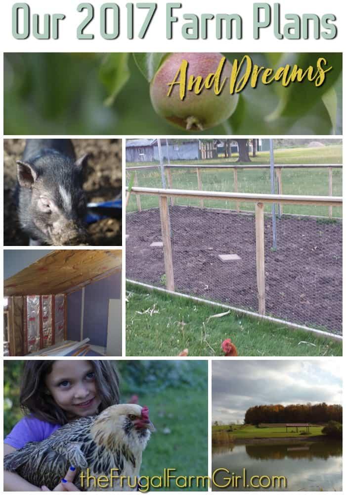 Our 2017 Farm Plans & Dreams