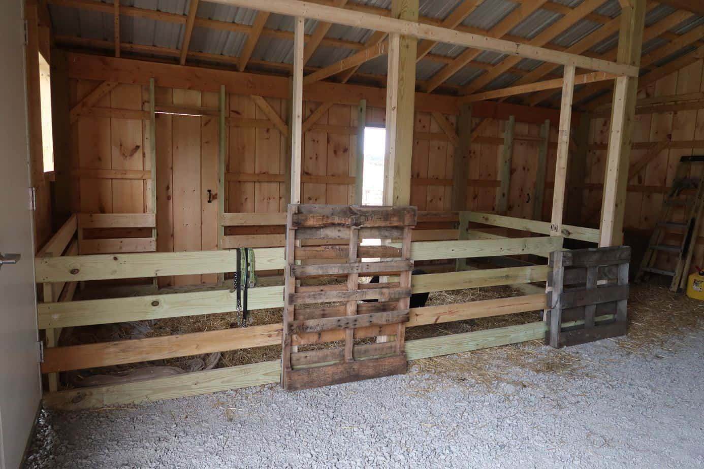 How to Build a Mini Pig Pen Using Pallets in Under 60 minutes