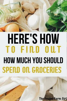 10 tips to save money on groceries
