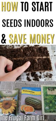How to Start Seeds Indoors & Save Money