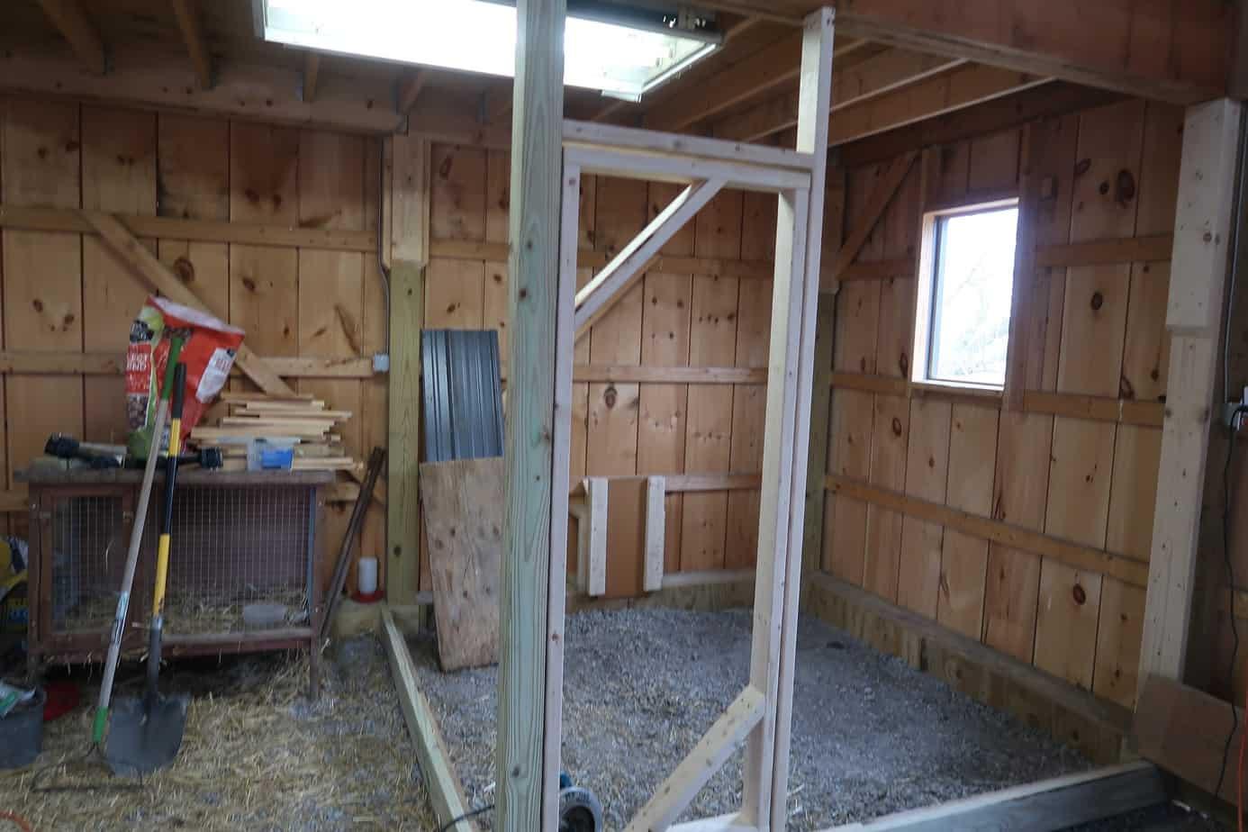 building a chicken coop 12 birds