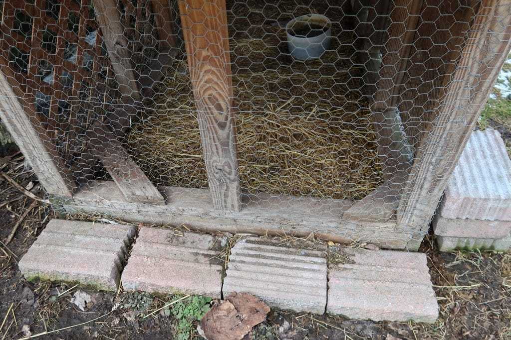 3 Tips For Prepping the Ground of a Chicken Coop