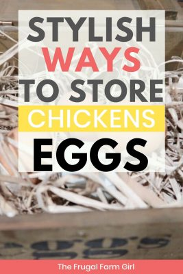 store your chicken eggs