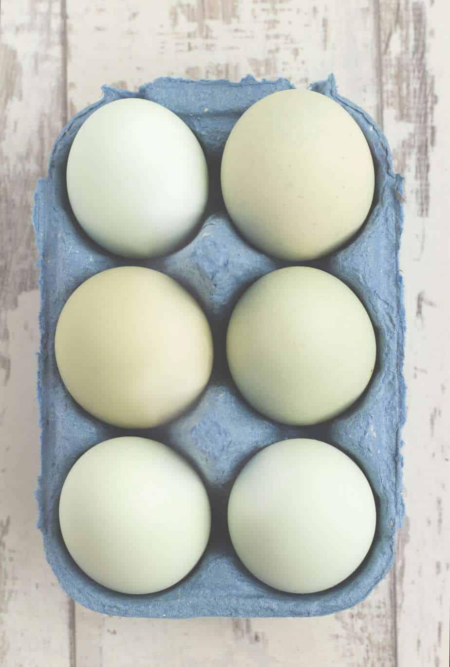 Cute & Cheap Egg Gathering Basket Holders