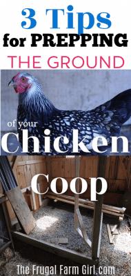 prepping ground chicken coop