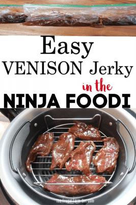 venison jerky air fryer tips