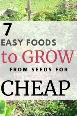 easy to grow foods