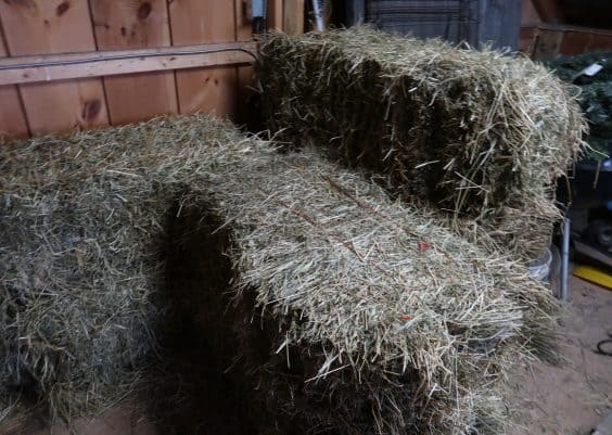 ways to cut hay bill in half