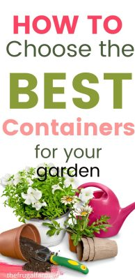 the best containers for your garden