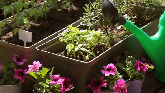 best material for container gardening
