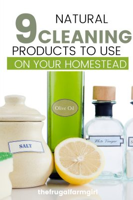 natural cleaning products to use