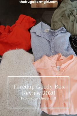 thredup goody box review 2020