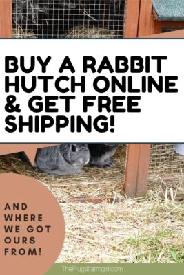buy a rabbit hutch online and get free shipping