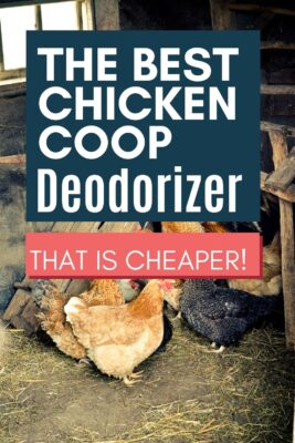best chicken coop deodorizer